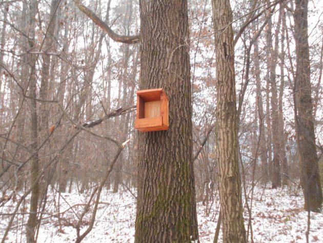 Medzi slušnými ľuďmi sa nájdu aj takí, ktorí myslia na vtáčikov, aby mali, čo zobať aj v zimných mesiacoch a preto im tam spravili aj takéto hniezda.