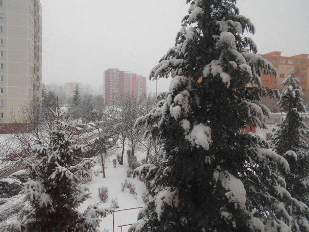 Konečne sneh