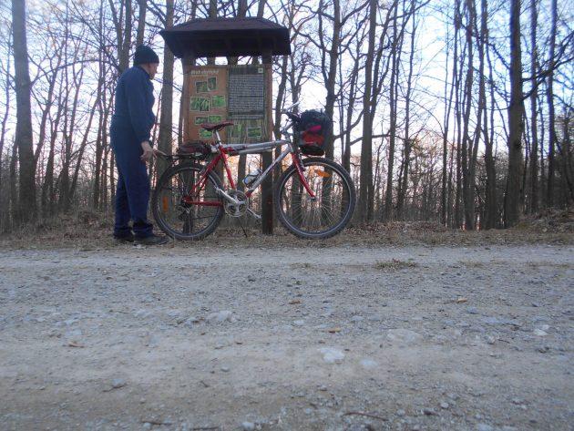 Na lesnej ceste medzi Horným Bankovom a KVP