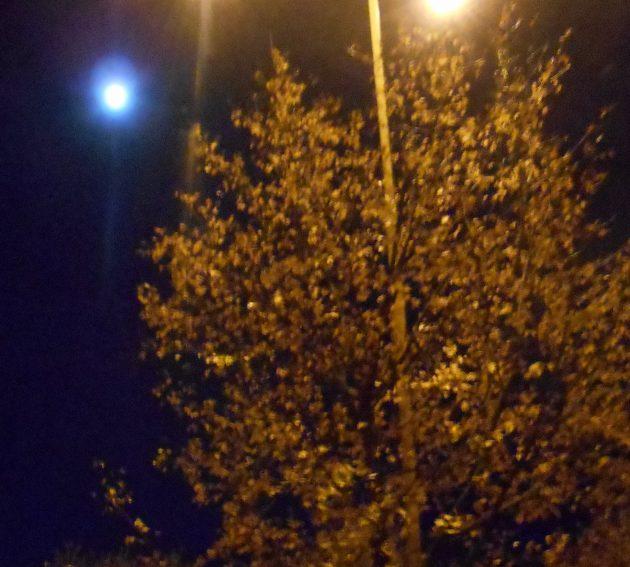 Žeby toto svetlomodré svetielko bolo ufo?