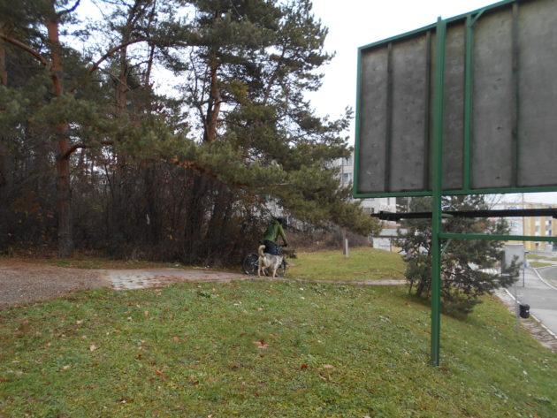 Okraj Borovicového hája ústiaci k hlavnému ťahu zo sídliska KVP na